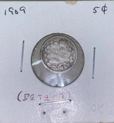 coin-02-2020